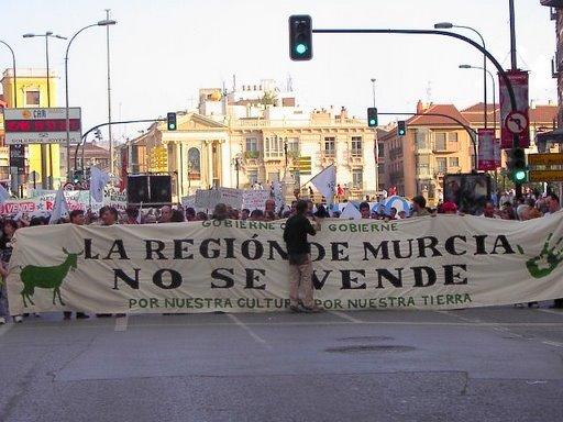 """LA PLATAFORMA CIUDADANA """"NO A ESTE PLAN URBANÍSTICO"""" PARTICIPÓ EN LA MANIFESTACIÓN DE MURCIA NO SE VENDE, Foto 3"""