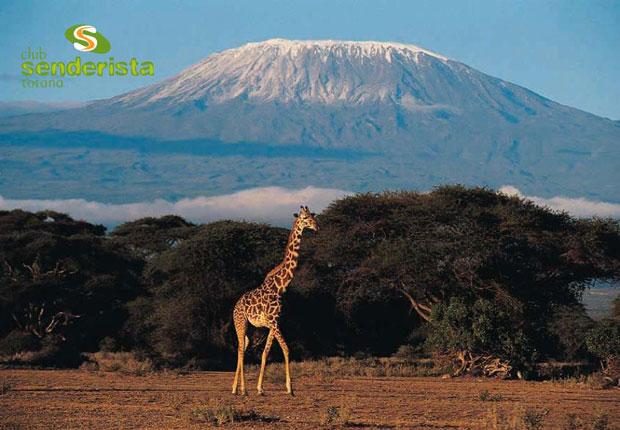 El club senderista de Totana planea un viaje este verano a Tanzania, Foto 1