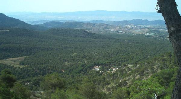 El Consejero de Medio Ambiente aseguró al Presidente de APESE que Sierra Espuña no será Parque Nacional si se oponen los propietarios, Foto 1