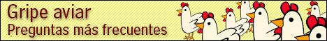 LA CONCEJAL�A DE CONSUMO INFORMA EN LA WEB MUNICIPAL SOBRE LAS CUESTIONES M�S IMPORTANTES RELACIONADAS CON LA GRIPE AVIAR   , Foto 1