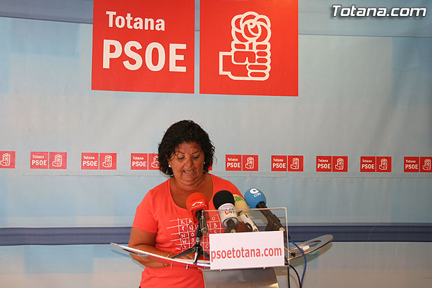 El PSOE asegura que Mart�nez Andreo utiliza el Pleno para insultar y atacar a la oposici�n (2008), Foto 1